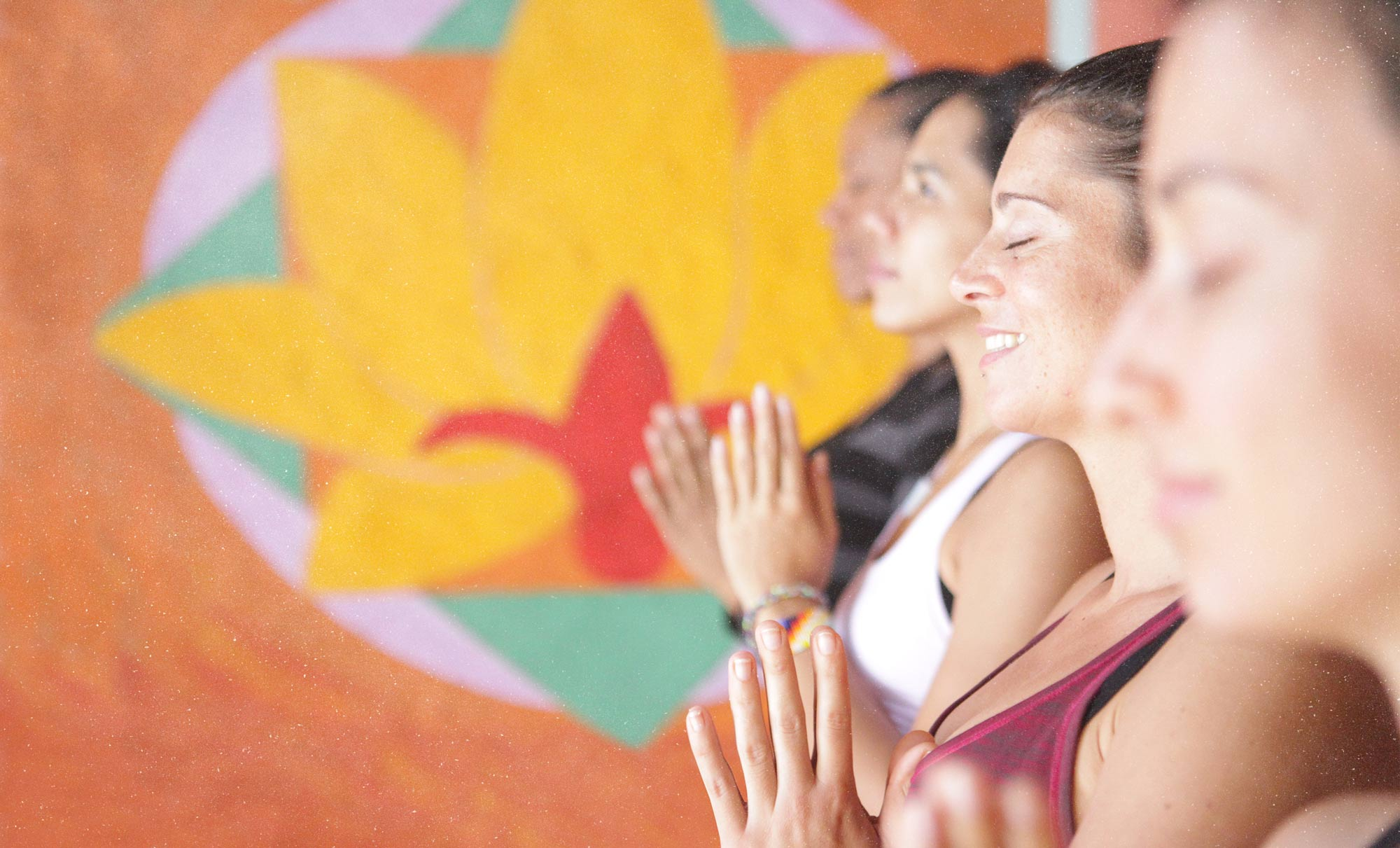 Yoga & well-being Retreat - Vikara in Ecuador